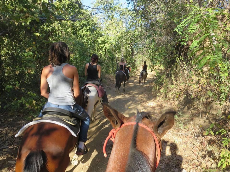 Wwoof Costa Rica- Photos of volunteers wwoofing in Costa Rica